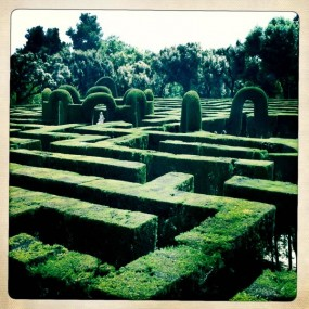 photo of the maze at Parc Laberint d'Horta